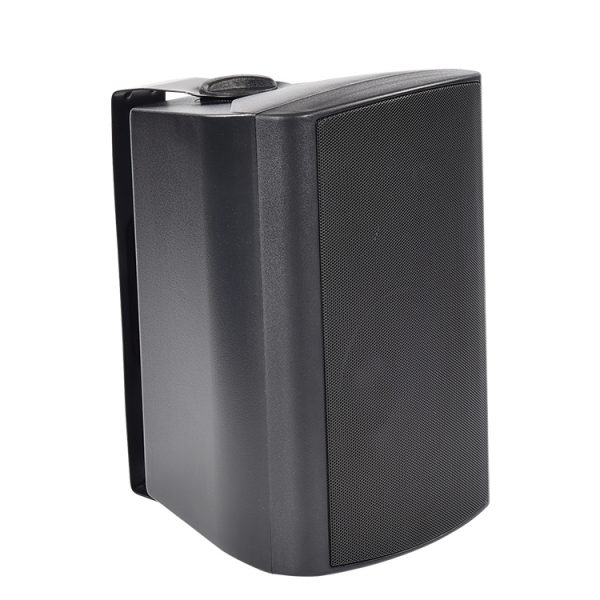 Wall-Mouted-Speaker-A675-1